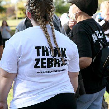 2017_zebra_walk_pict27
