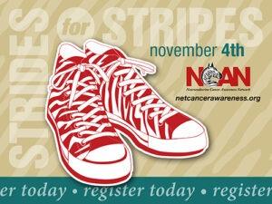 "3rd Annual ""Strides for Stripes"" Zebra Walk (Charlotte)"